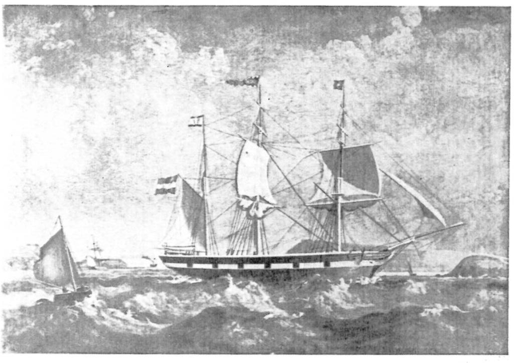 Amalie-Hillmann